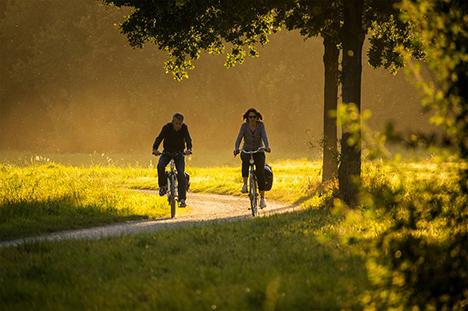 Cykelpolitisk Tænketank mødes første gang på torsdag