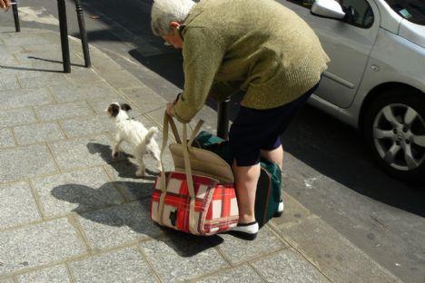 Hvem skal fjerne hundelorten på fortovet?