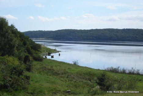 To nye medlemmer udpeget til Naturråd Mariagerfjord
