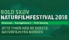 Festival i Kinorevuen i Skørping