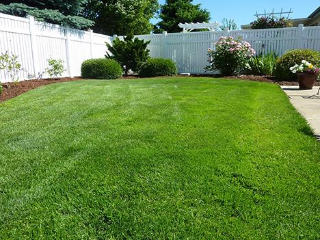 Ønsker du allerede at få styr på haven til sommer nu? Så læs med her