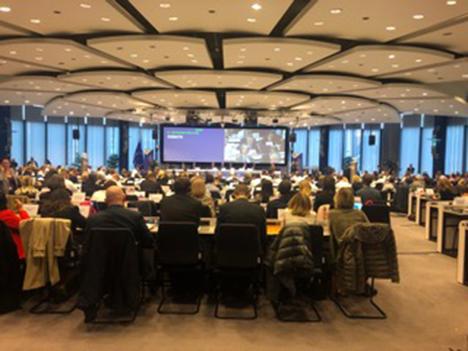 Afrikansk svinepest i Europa - var en af de store punkter på Regionsudvalgets møde i oktober