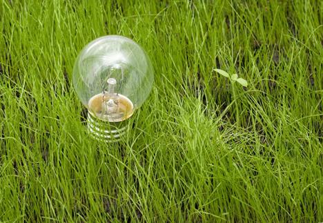 Grøn strøm i de kommunale stikkontakter