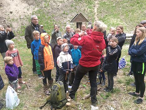 På jagt efter fossiler i Rold Skov
