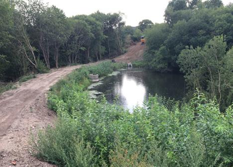 Naturområde i Hørby bragt til live