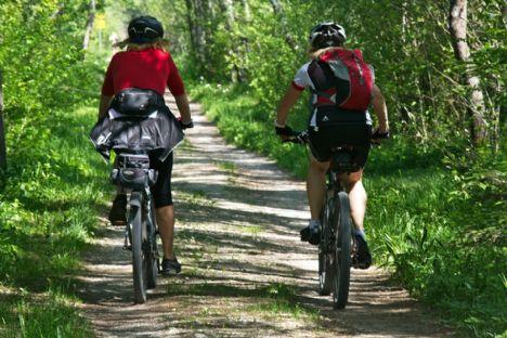 Sommerferietip: Cykelture langs kyst og fjord