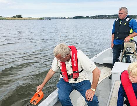 Det lykkedes   Fritidsfiskerne i Mariagerfjord har i dag sat 20.000 små skrubber ud i fjorden
