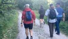 På guidet tur i Rold Skov med menneskets bedste ven