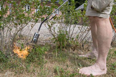 Ukrudtsbrænderen er forårets store brandstifter