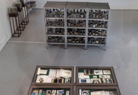 Bruno Kjær om sin udstilling Skyggebibliotekets spejl