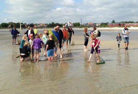 Dagens Sommerferietips: Det går helt i fisk på stranden i Øster Hurup